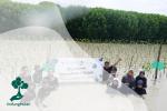 Sepuluh Ribu Mangrove dari Somethinc untuk Desa Bedono