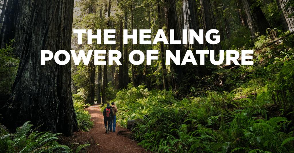 The Healing Power of Nature 1 – Wanaswara