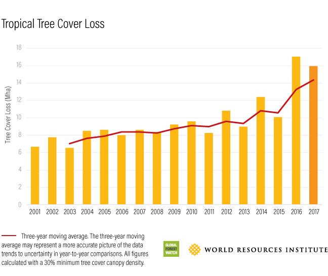 Gambar 3 Grafik Deforestasi Hutan Tropis Global