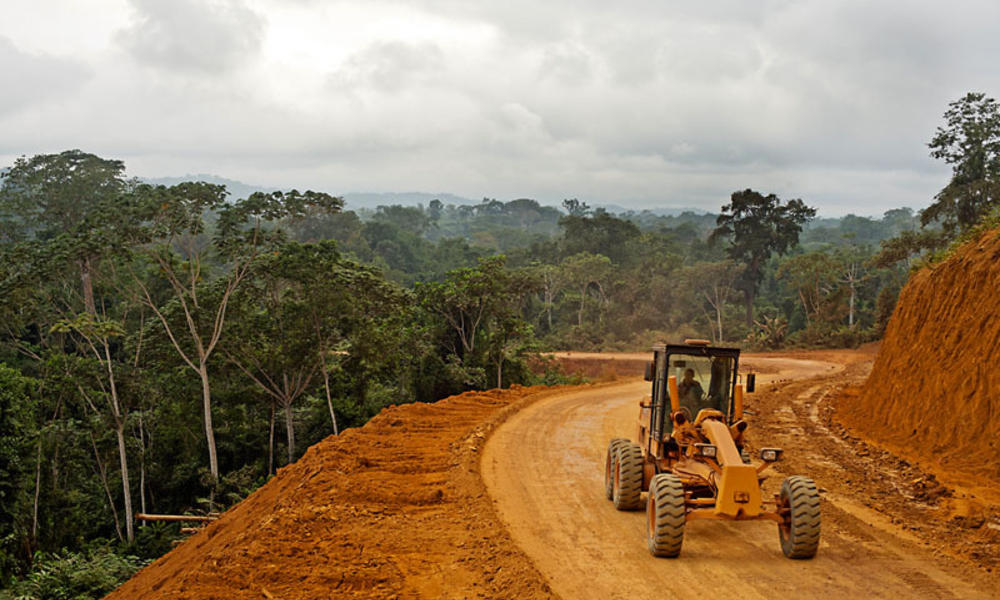 Gambar 5 Pembukaan Lahan Hutan untuk Infrastruktur Jalan