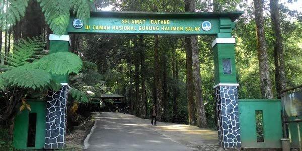 Gunung Halimun Salak, Taman Nasional di Papua