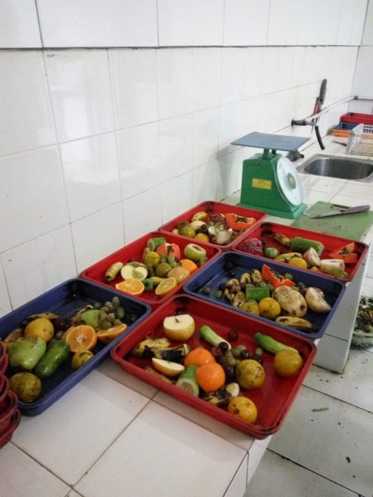 Gambar 2.1.1 Buah-buahan untuk Satwa Liar
