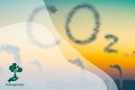 Mengenal Perdagangan Karbon (Carbon Trading)