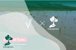 Kampanye Alam Vert Terre, A Tale of Trees