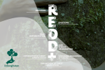 REDD+, Upaya Pemerintah Mengurangi Gas Rumah Kaca Melalui Pengelolaan Hutan