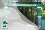 Taman Nasional Gunung Halimun Salak: Rumah Macan Tutul Jawa