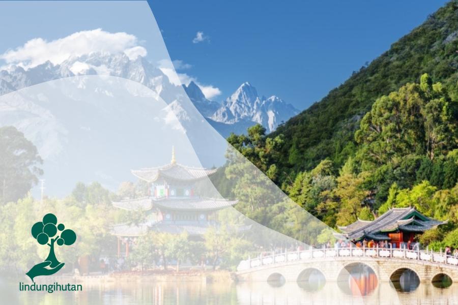 Fengshuilin: Hutan Kecil yang Dirancang Melalui Fengshui