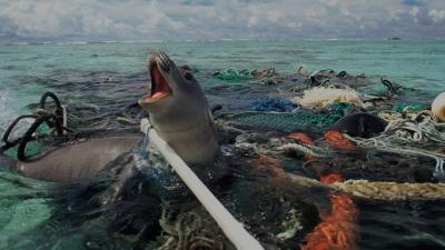 Gambar 4 Pencemaran Limbah Plastik © State of the Planet