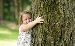 Fenomena Nature Deficit Disorder serta Manfaat Memeluk Pohon Bagi Kesehatan