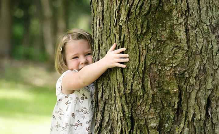 Gambar 2. Memeluk Pohon