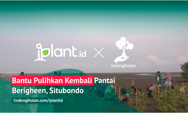 Gambar 1 Kampanye Alam iPlant.id © LindungiHutan
