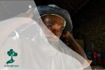 Mbah Sadiman, Tokoh Penghijauan yang Dianggap Gila