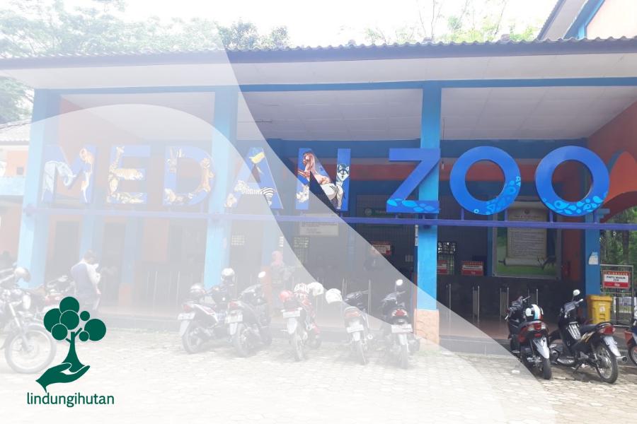 Medan Zoo, Kebun Binatang yang Kurang Terawat