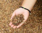 Manfaat Limbah Kopi bagi Lingkungan