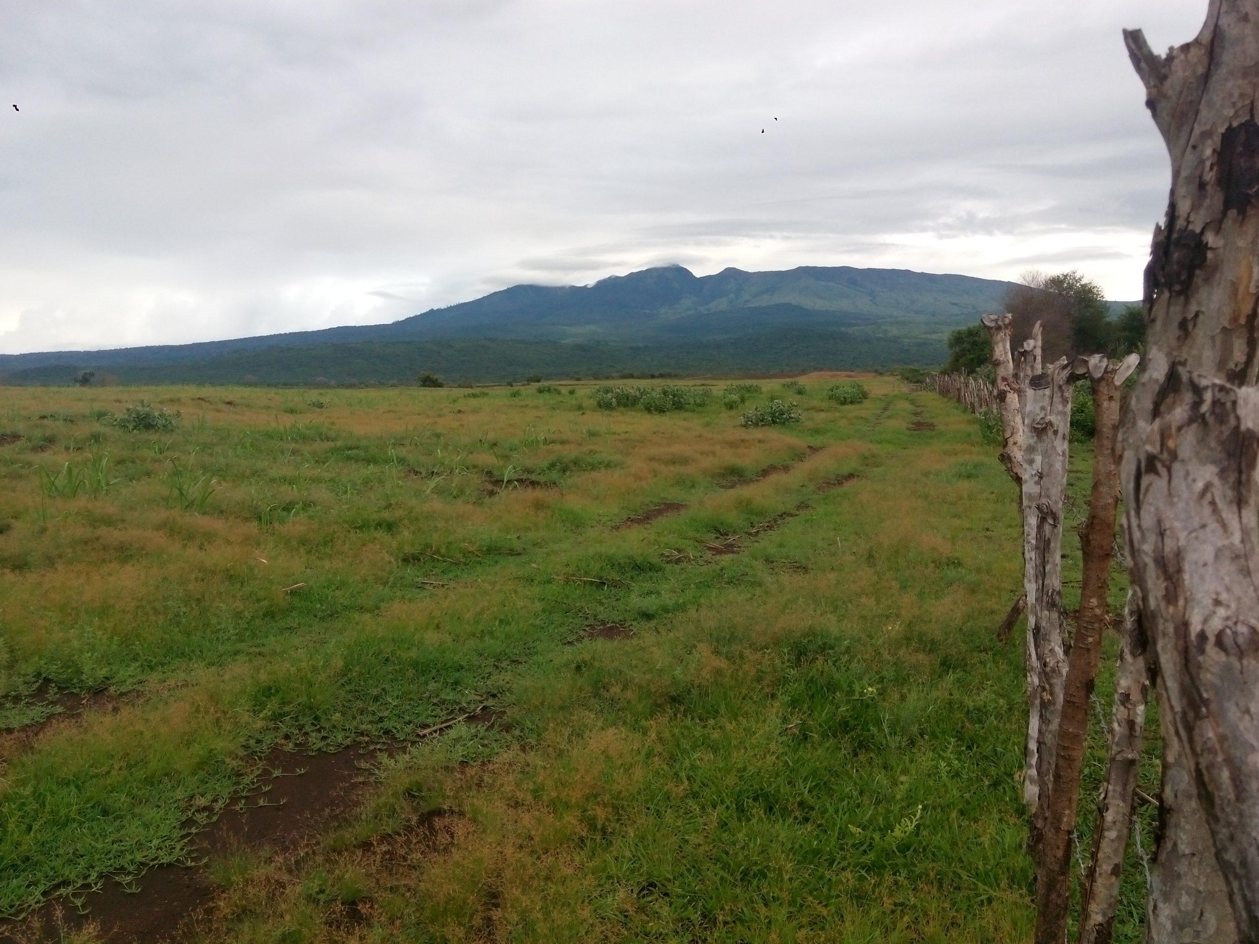 Gambar 1 Pintu Masuk Taman Nasional Gunung Tambora