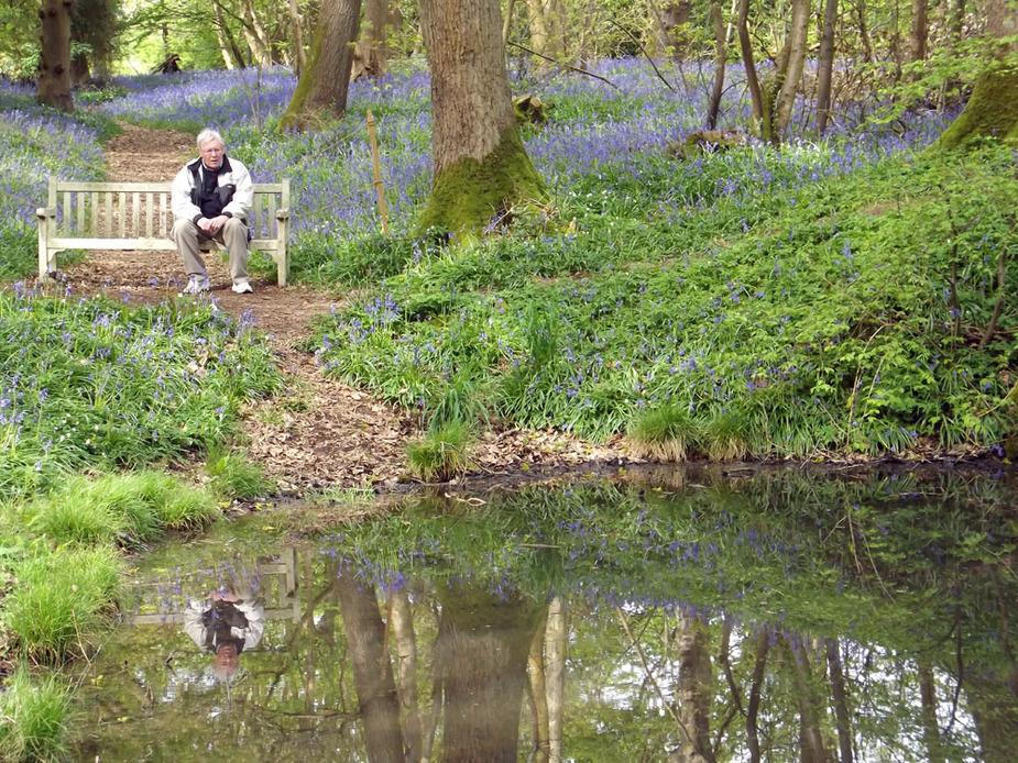 Gambar 4 Salah Satu Pengunjung yang Sedang Menikmati Suasana Alam di Hutan Hallerbos