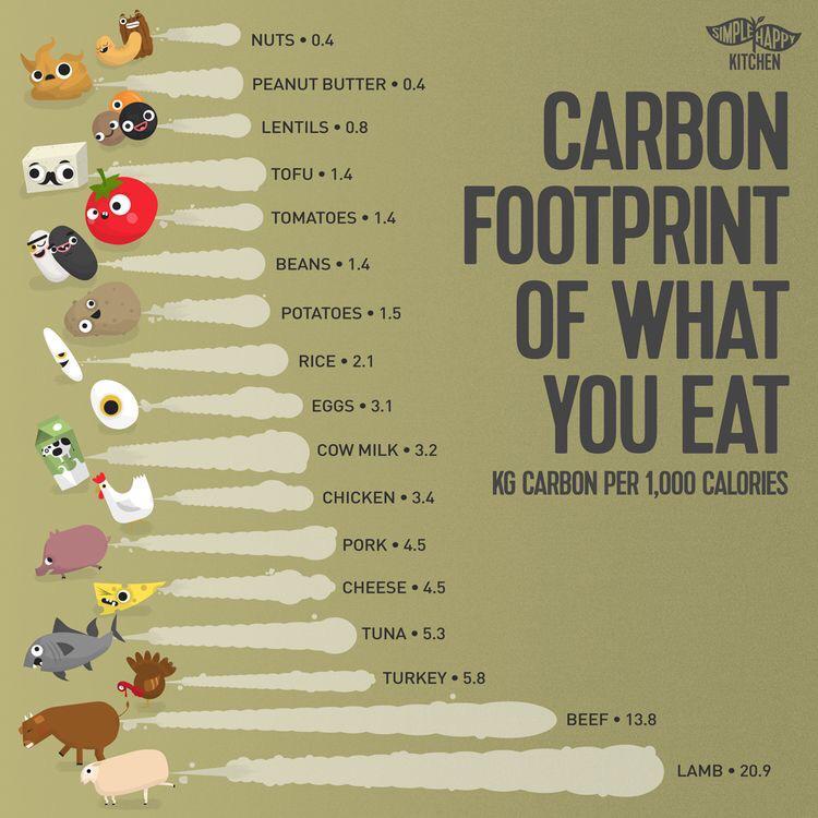 Gambar 3 Carbon Footprint Makanan