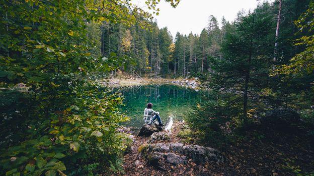 Gambar 2 Ilustrasi Orang yang Sedang Melakukan Waldeinsamkeit