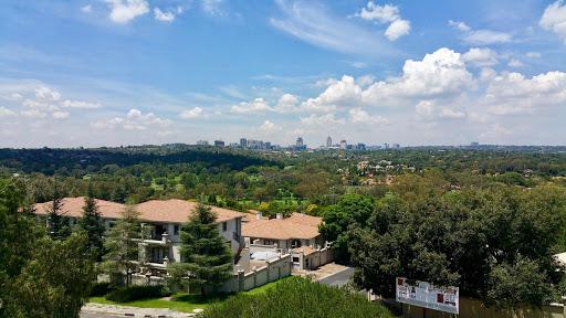 Gambar 2 Urban Forest di Johannesburg