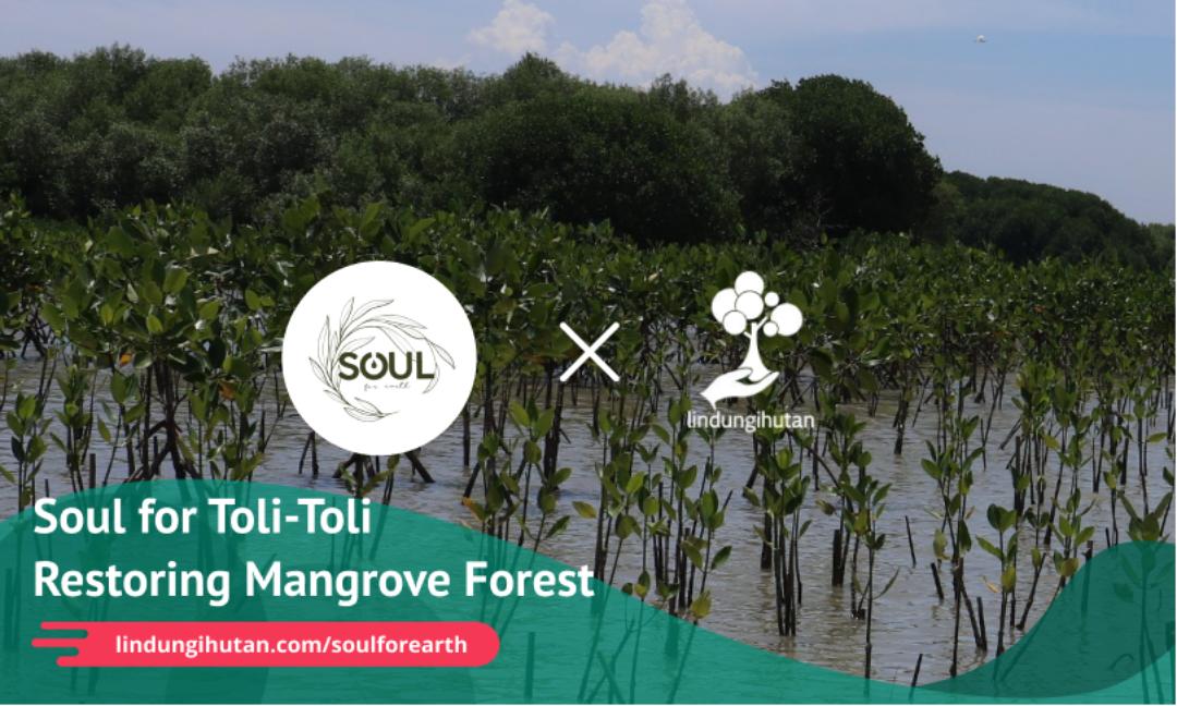 Kampanye Alam Soul for Toli-Toli with Soul4Earth ©LindungiHutan