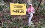 #KitaTanamKembali: 150 Pohon dari Fabelio (& Kamu!) untuk Bumi yang Lebih Nyaman