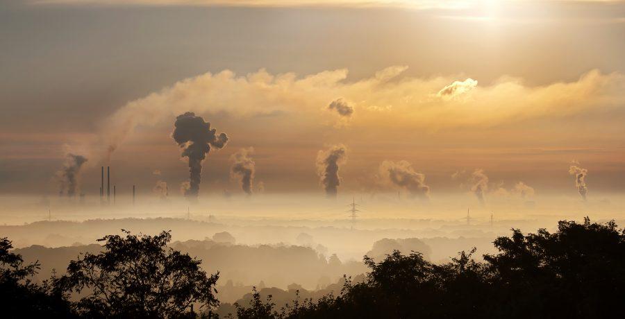 Pasar Karbon: Sebuah Hadiah untuk Bumi?